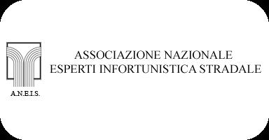 Associazione Nazionale Esperti di Infortunistica Stradale